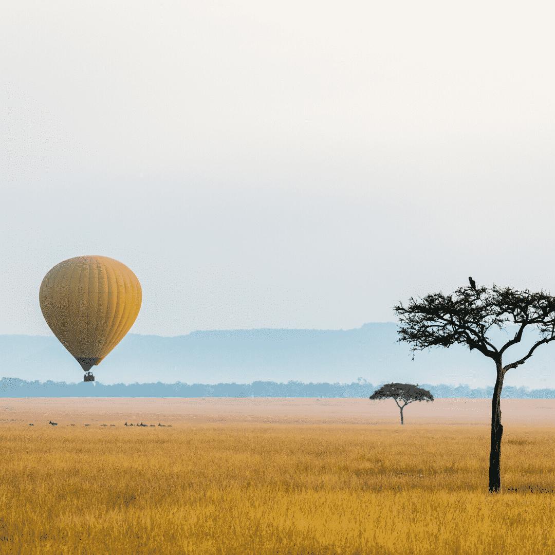 Air Safari
