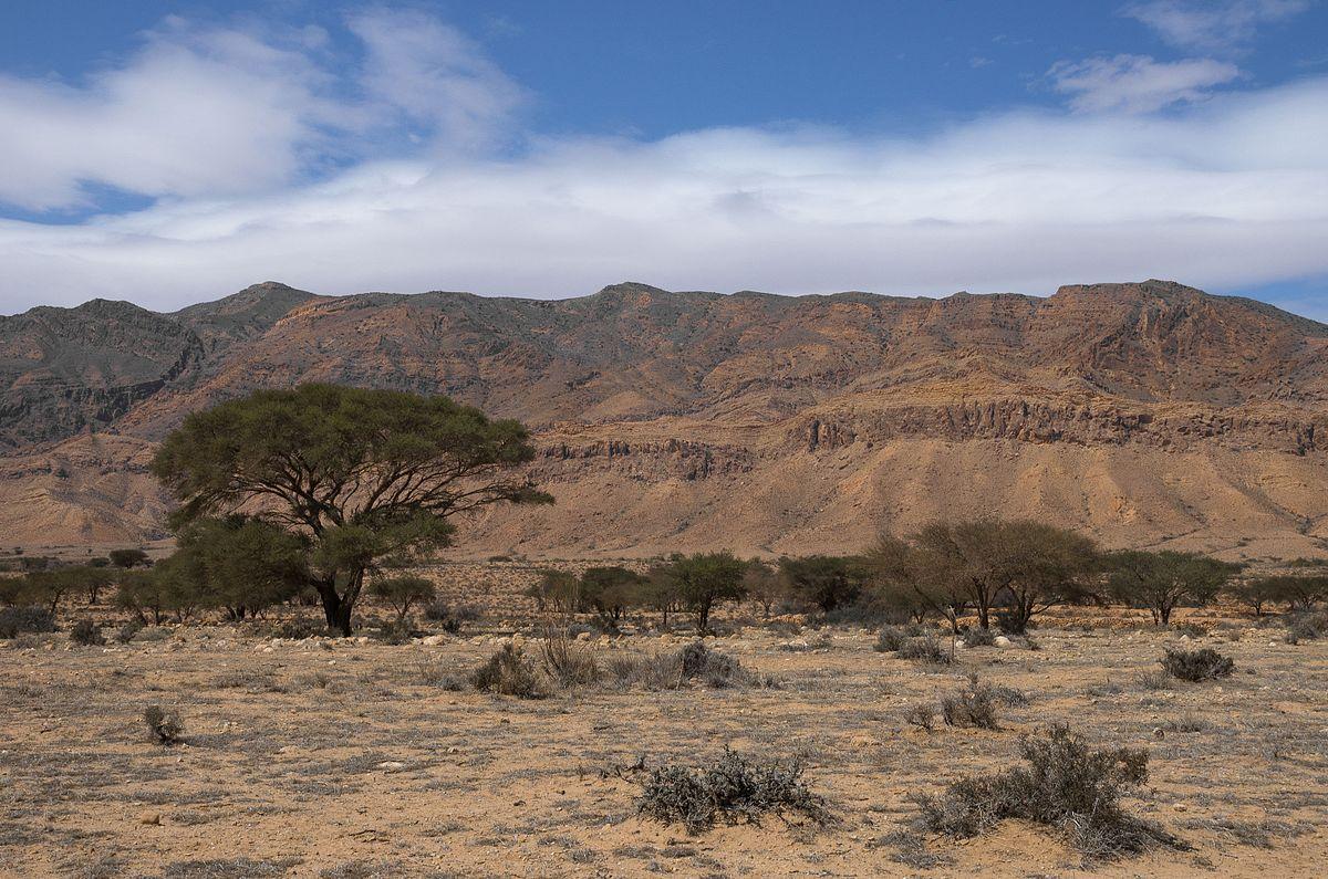 Bou-Hedma National Park