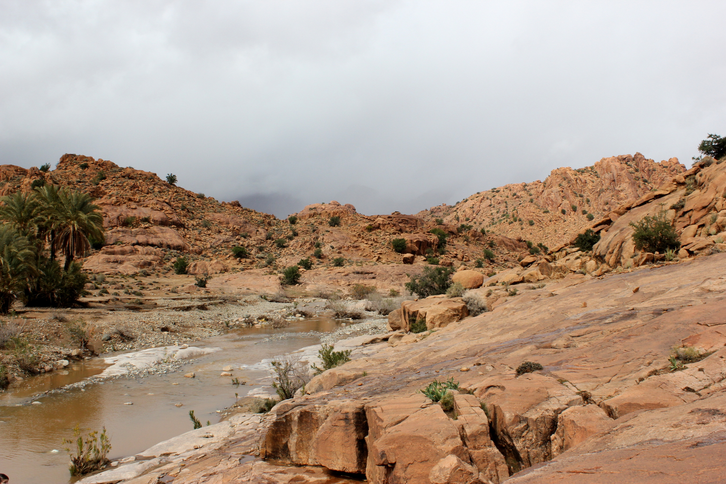 Oued Massa Nature Reserve
