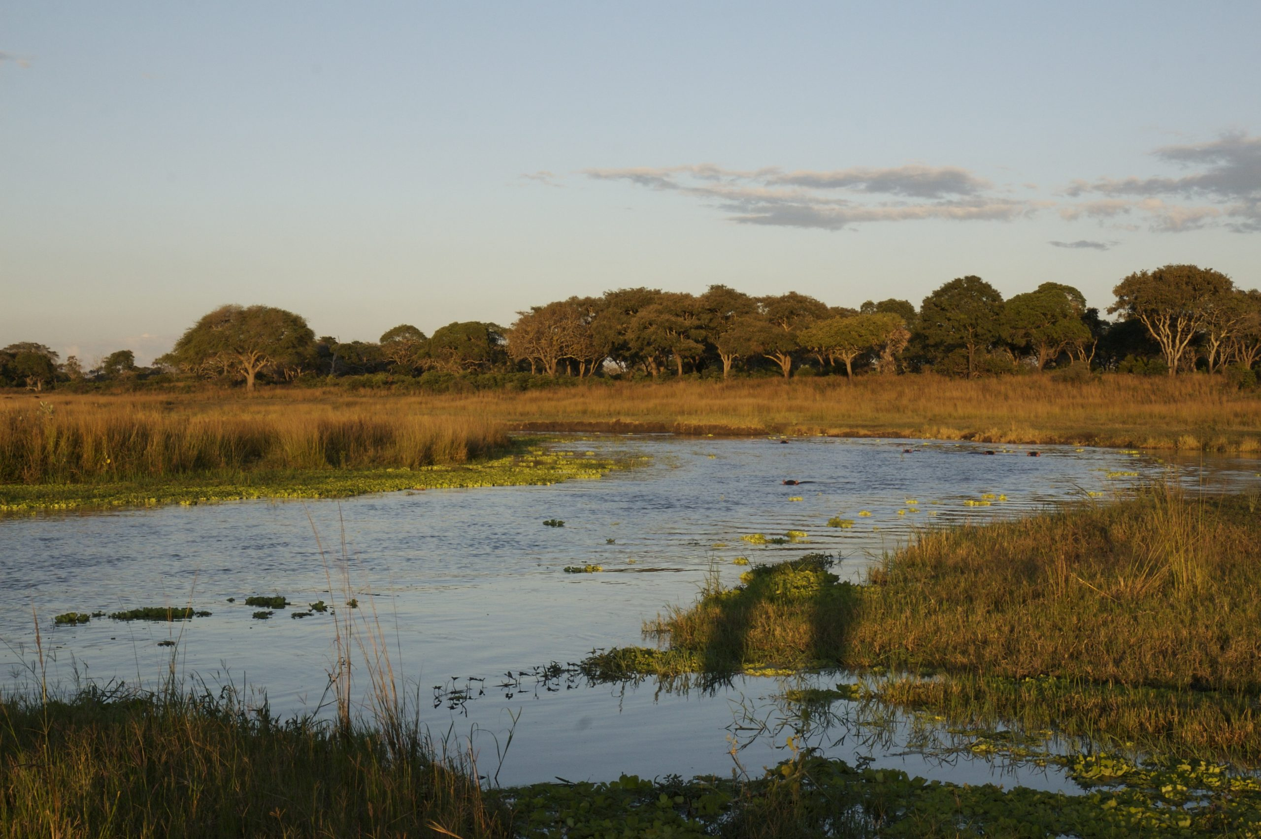 Uwanda Game Reserve