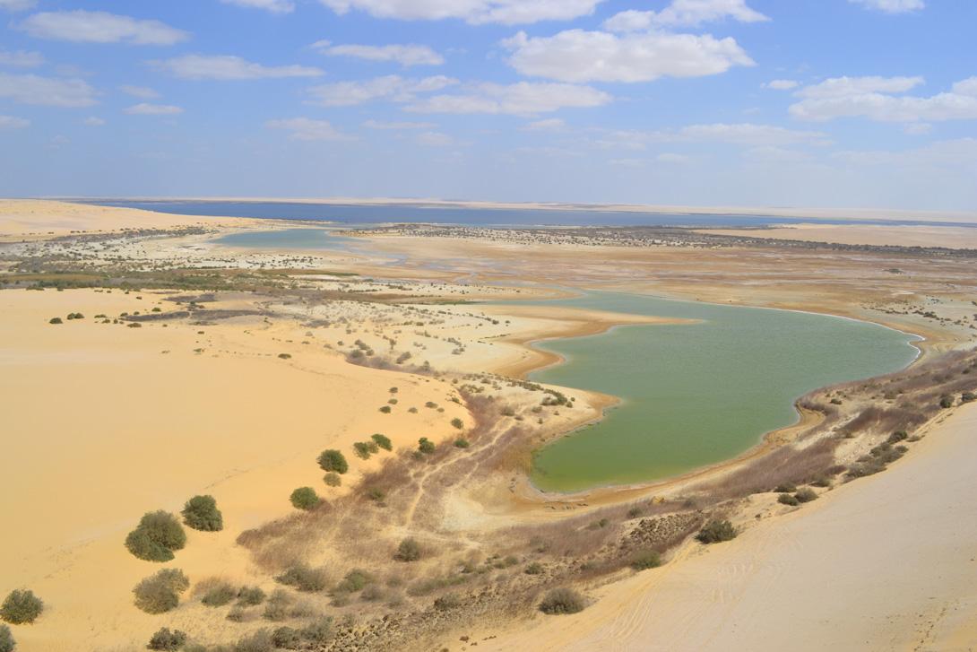 Wadi El Rayan National Park