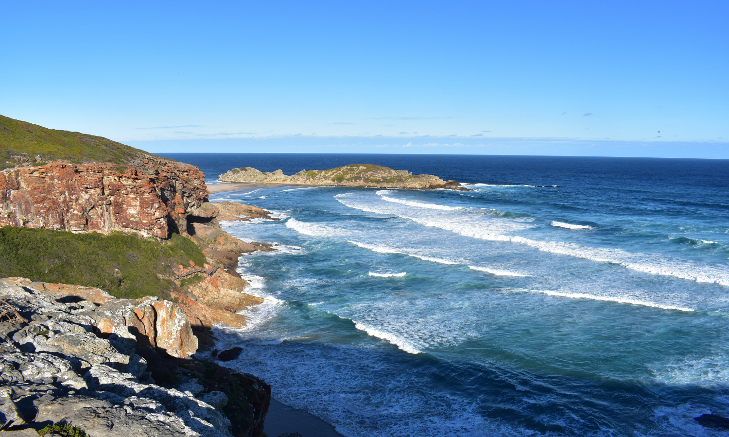 5-day ultimate Garden Route to Addo tour